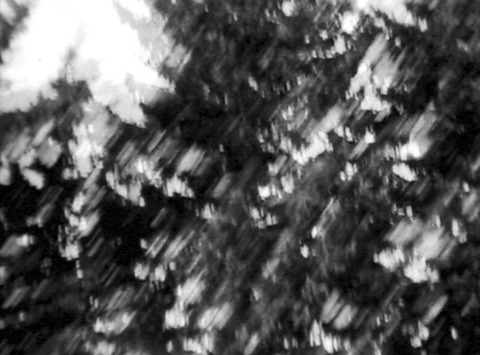 four_vignettes_01.jpg