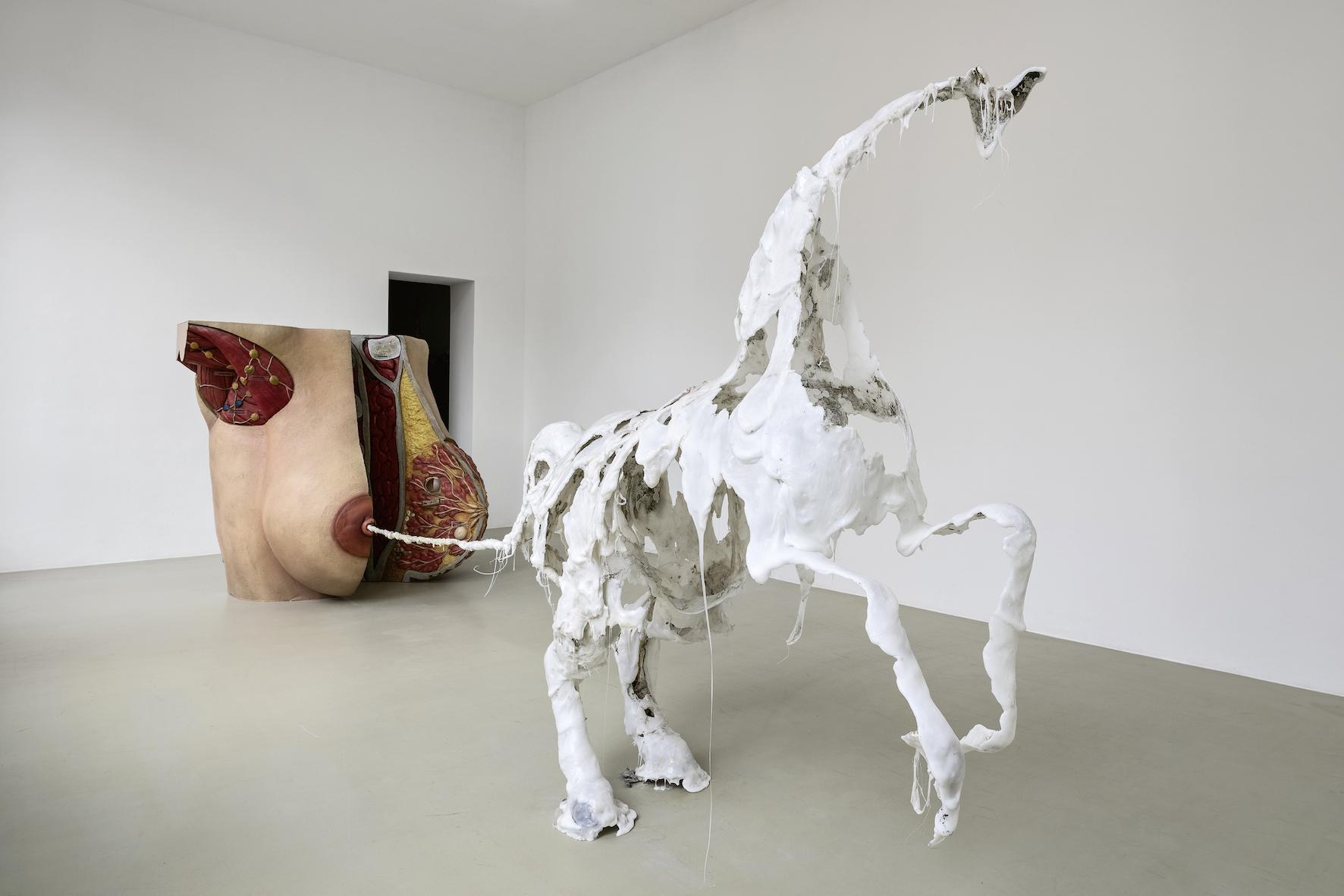 Raphaela Vogel, Uterusland, 2017, Ausstellungsansicht Kunstverein Hannover