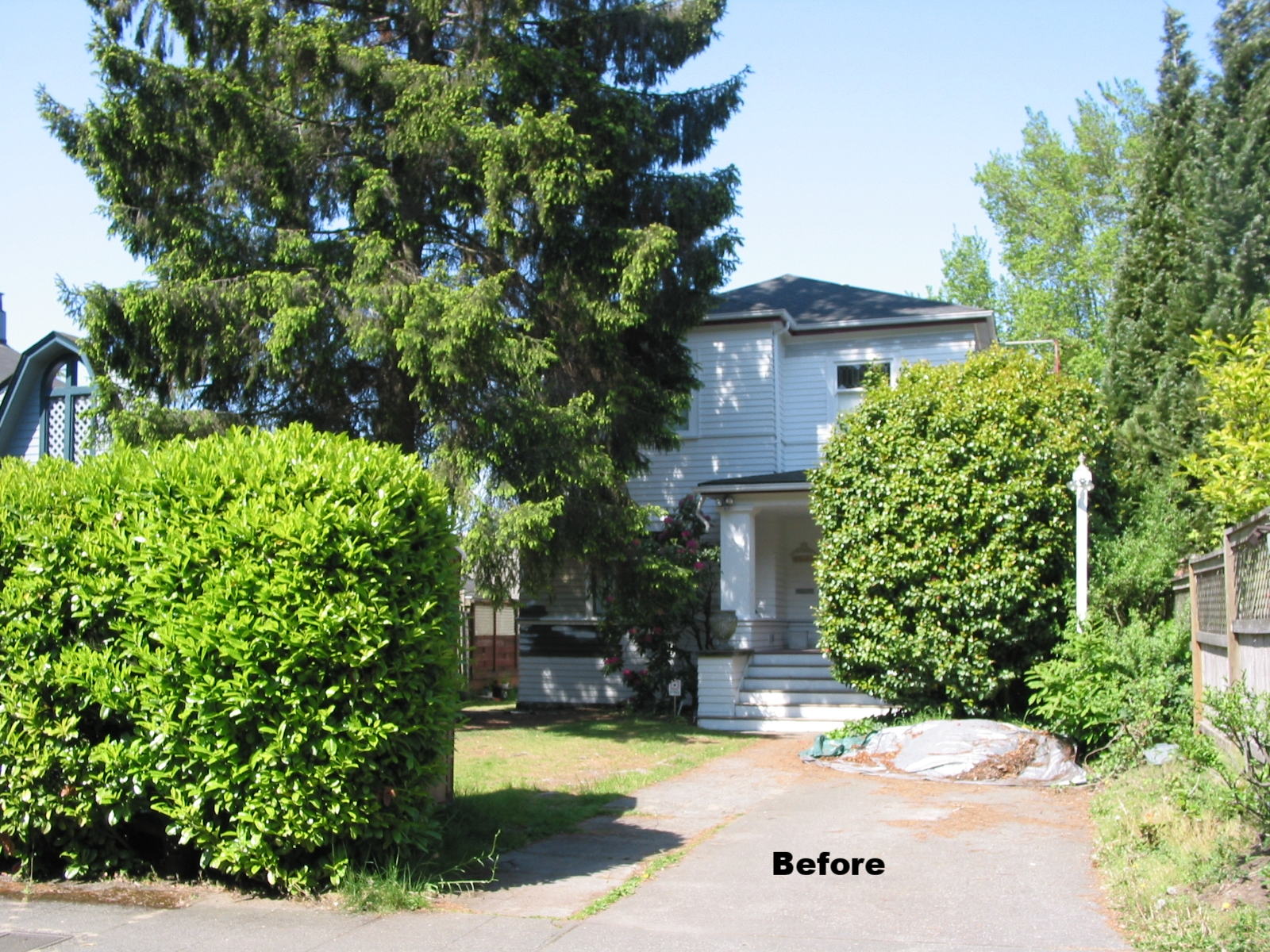 At the beginning of this project, there was patchy lawn and an un-drivable vintage car in the driveway that had been there for years.The yard was just a place to rush past in order to reach the house.