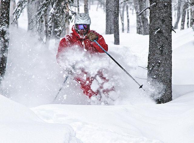 #powderday au @lemassif après toute cette #neige #champagne. On se croiraitau #japow ! #liguori a encore des secteurs avec de l'or blanc à profusion!  @blizzardskis @tecnicaskiboots @hellyhansen #freeride #tempetedeneige #snowstorms #ski #backcountry #quebec #charlevoix #adventure #stayhumbleridebig