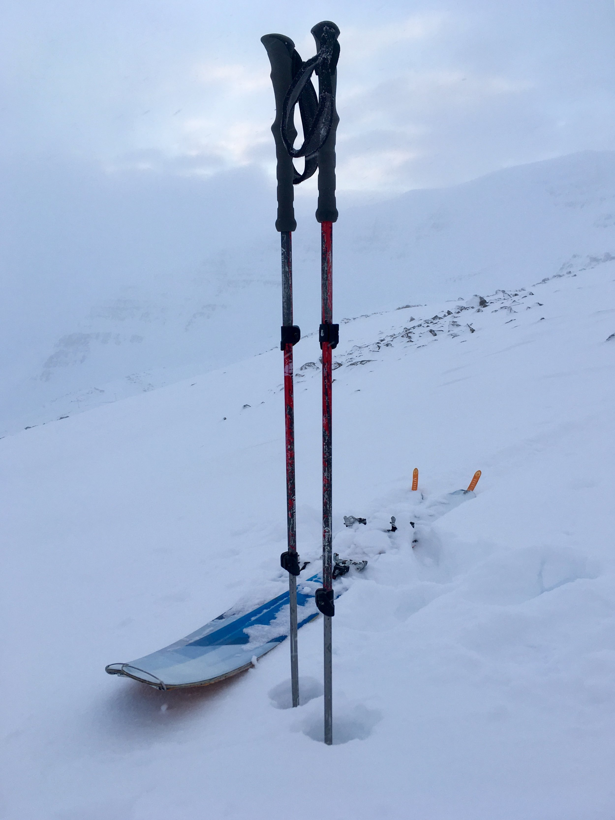 Black Diamond: Expedition 2 Adjustable Ski Poles/Black Diamond Element Skis