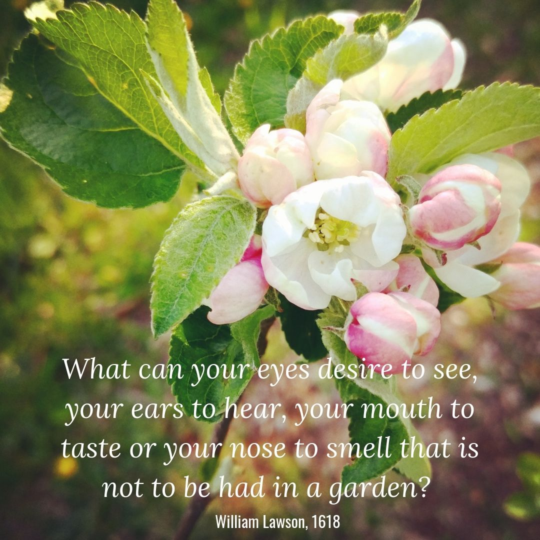 """""""What can your eyes desire to see, your ears to hear, your mouth to taste or your nose to smell that is not to be had in the garden?"""" - William Lawson, 1618"""