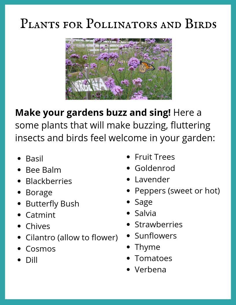 Plants for Pollinators and Birds.jpg