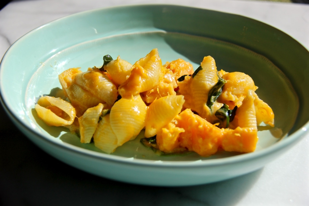 shells-and-cheese-with-butternut-squash-and-spinach