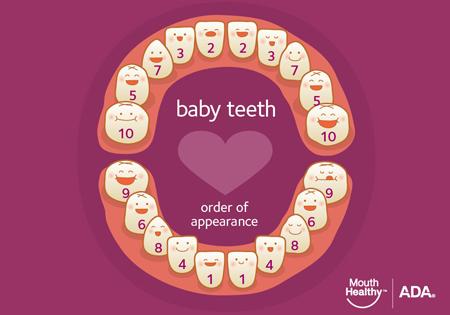 Photo credit: The American Dental Association