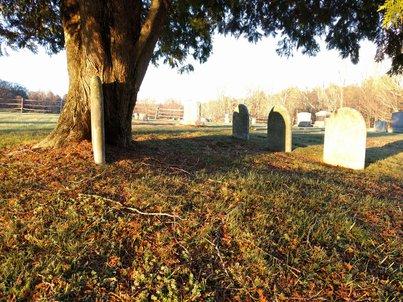 light-graveyard-small.jpg