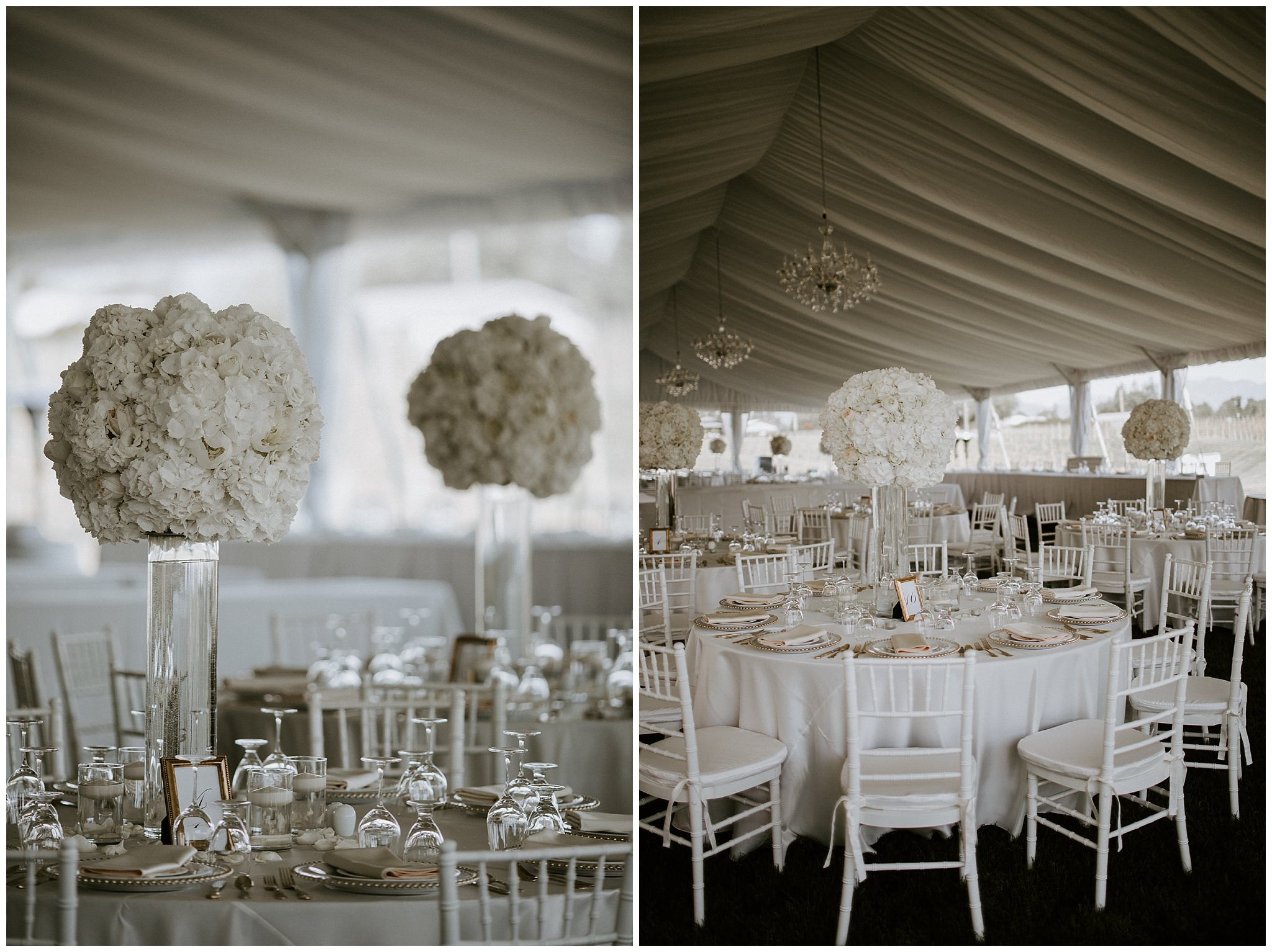 mt-lehman-winery-wedding-abbotsford-18.JPG