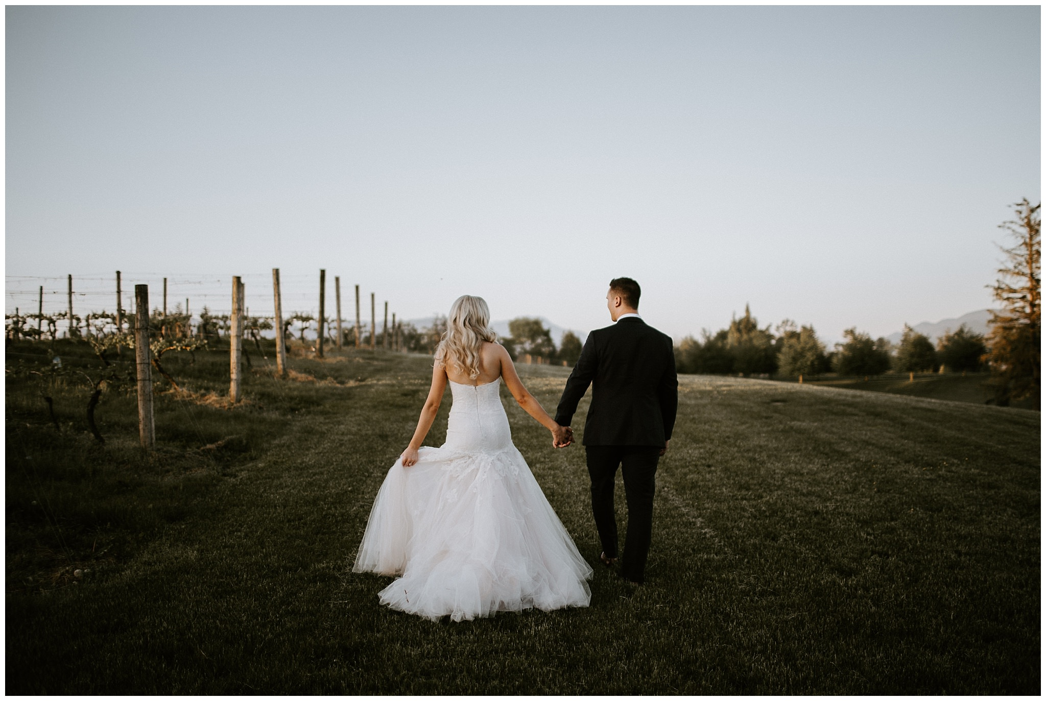 A bride and groom in the vineyard at Mount Lehman Winery