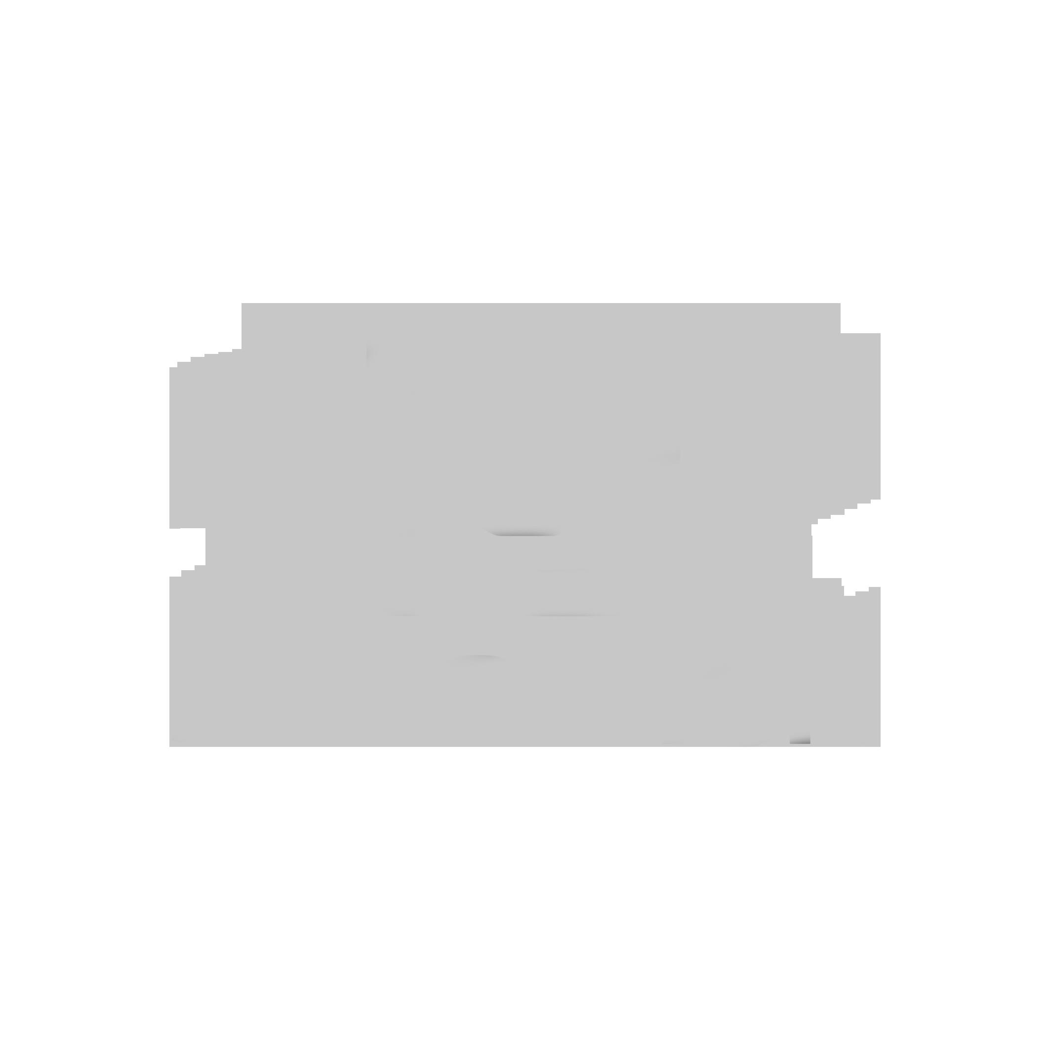 salomon-logo_grey.png