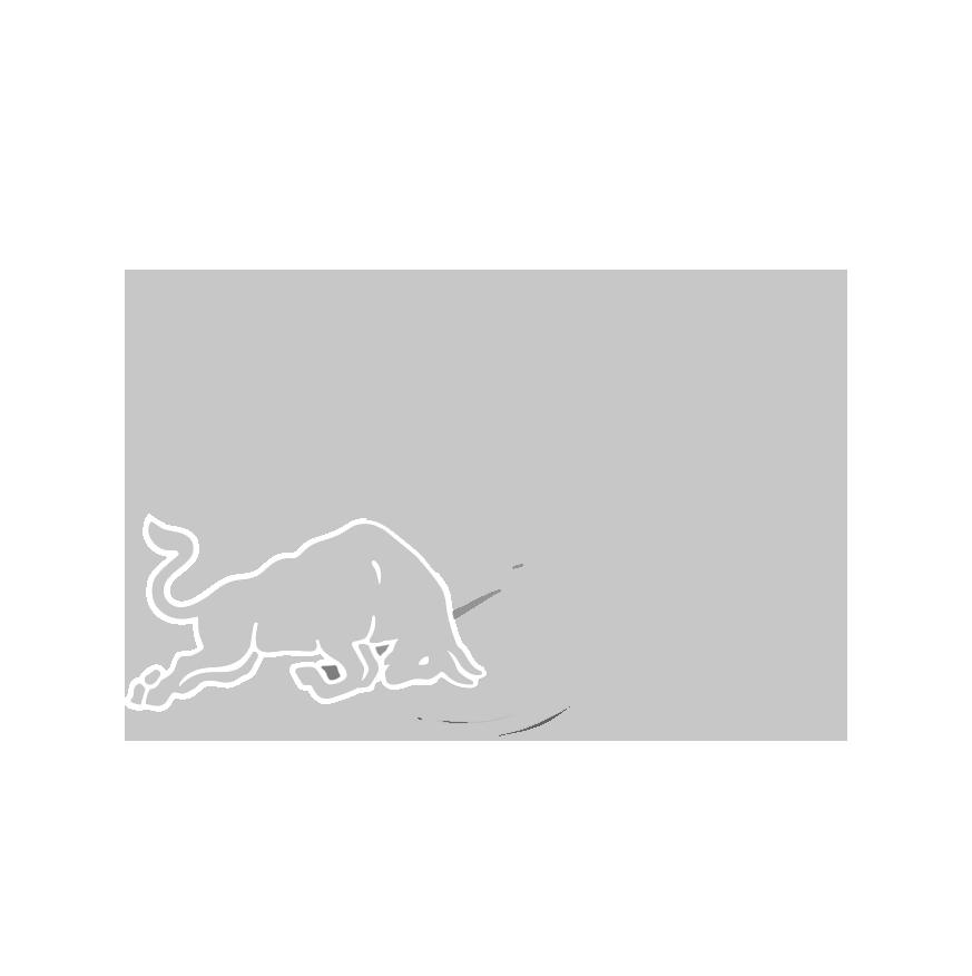 Redbull_logo_grey.png