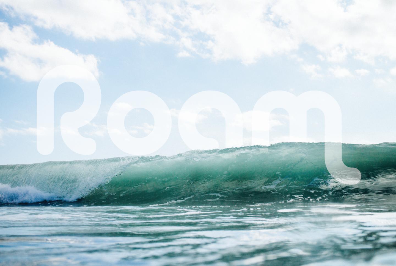 Roam_Title_Wave.png