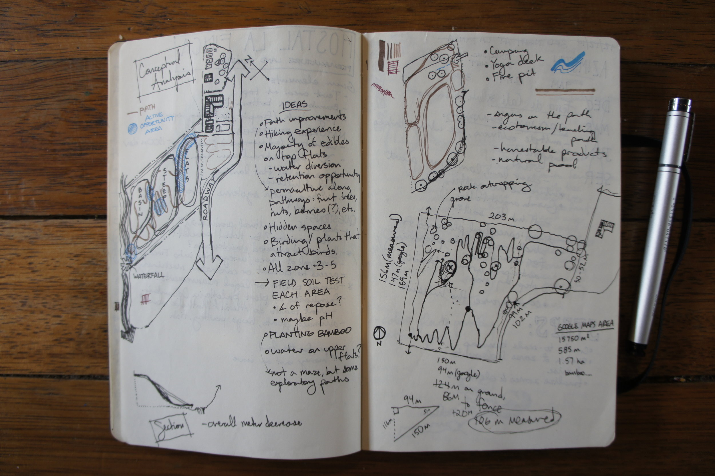Field notes from walking the property