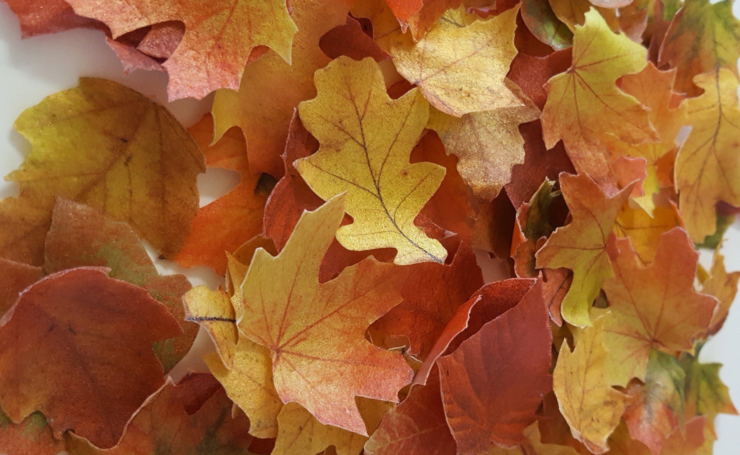 pile+of+leaves.jpg