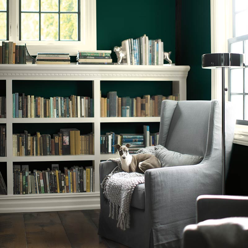 Use Metropolitan in accents like upholstery with dark, bold walls to give the eye a place to rest. Via  Benjamin Moore .