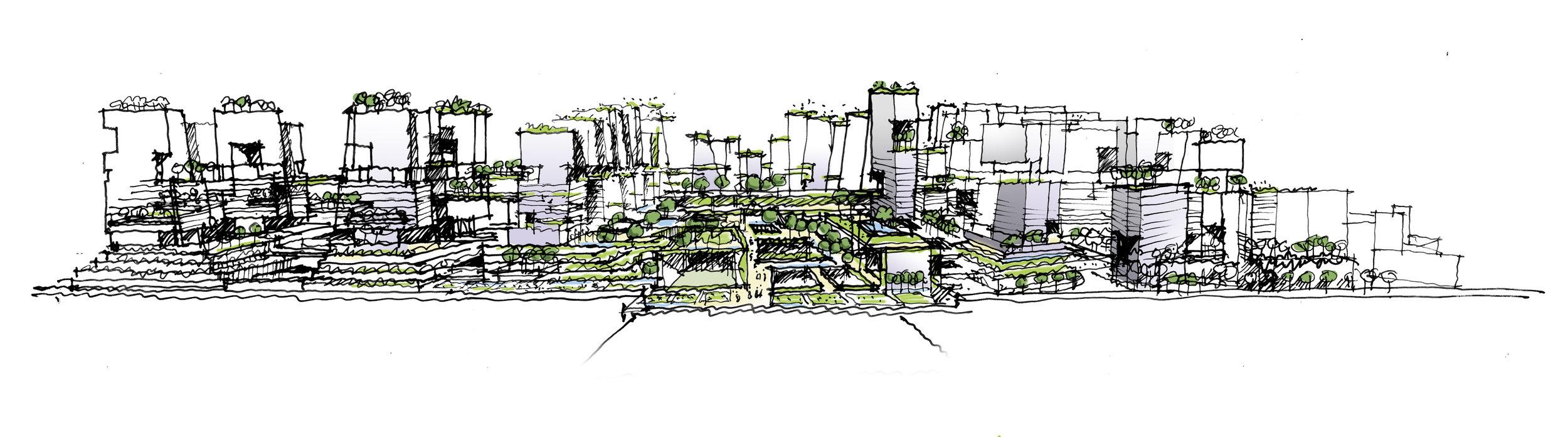 Franklins Sketch 2_3500px.jpg