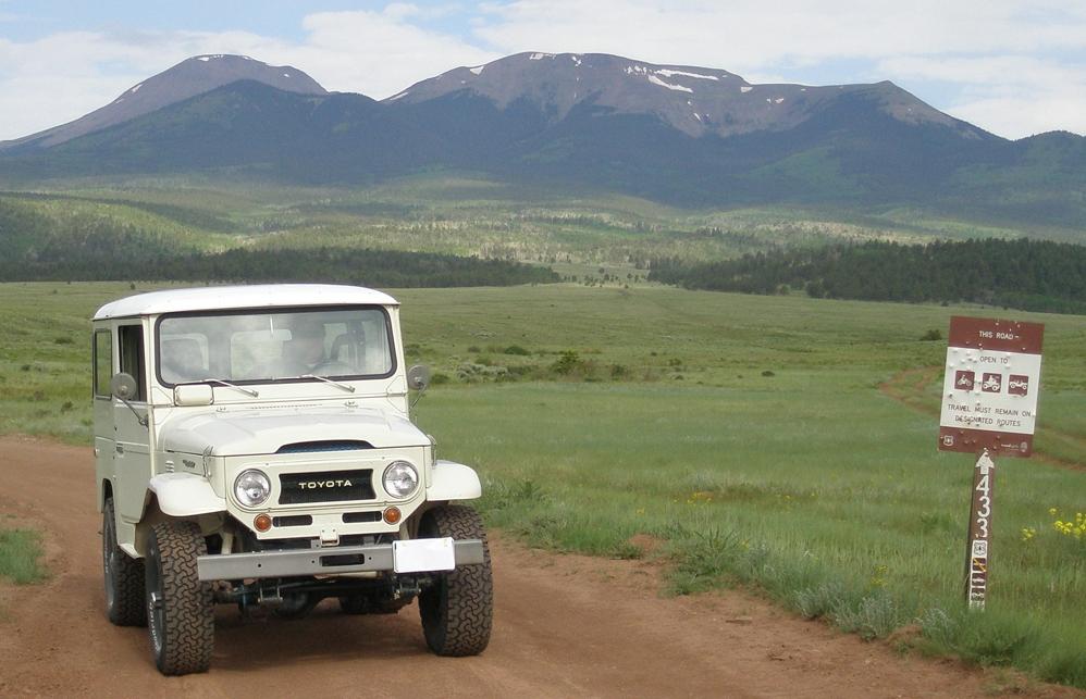 Motor vehicle recreation on the PSI