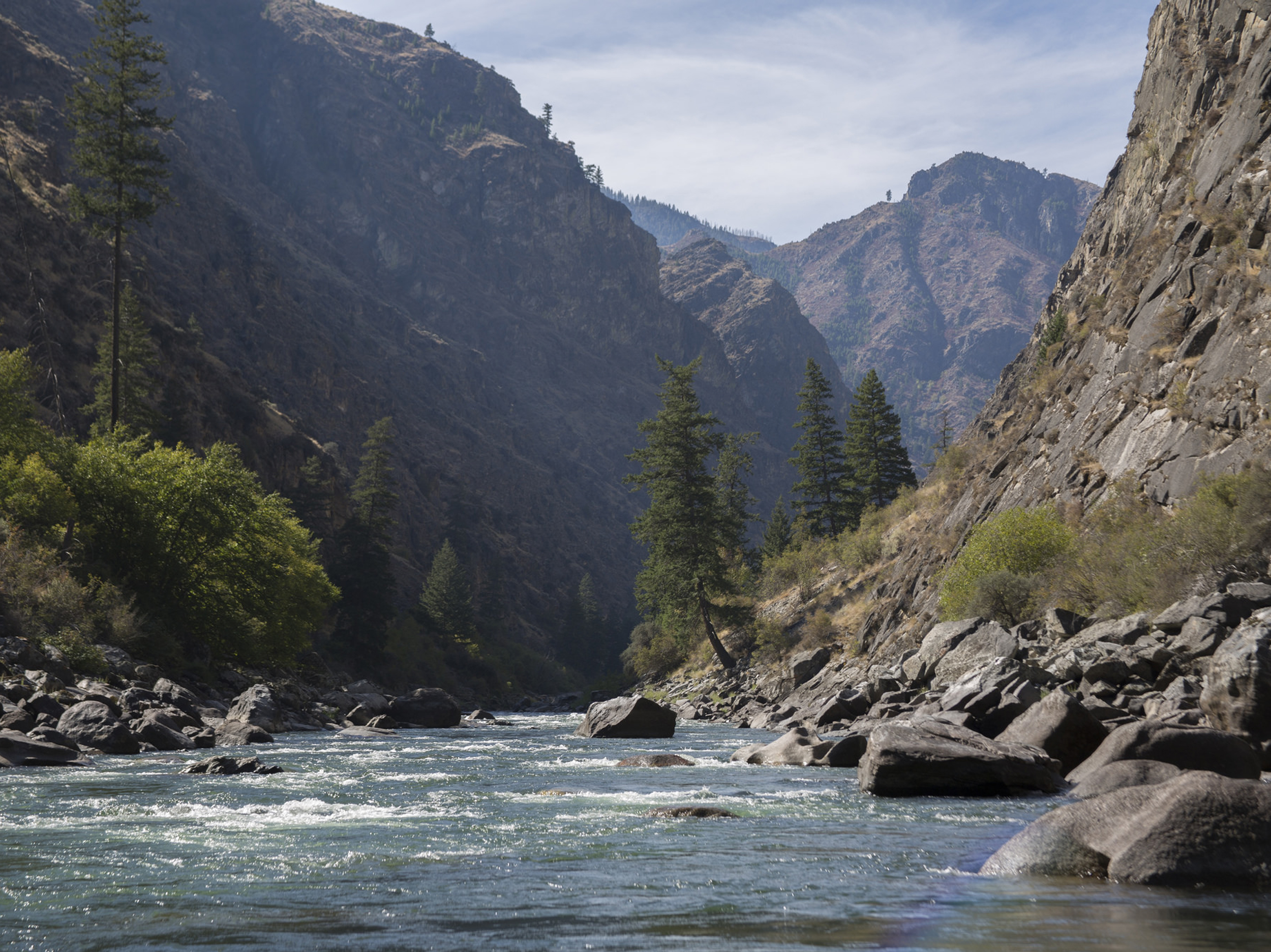 Middle Fork of the Salmon River, ID