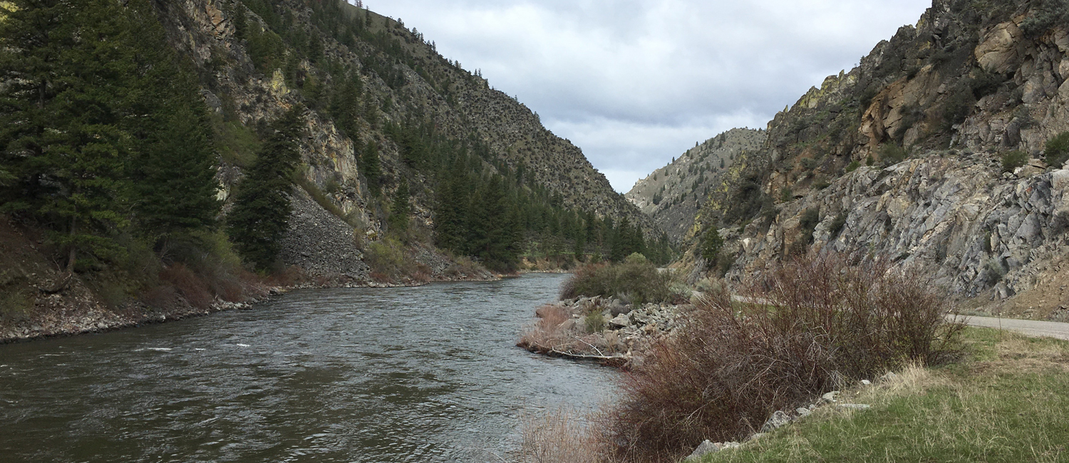 Main branch of the Salmon River, ID