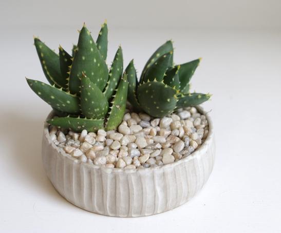 Handmade Pottery