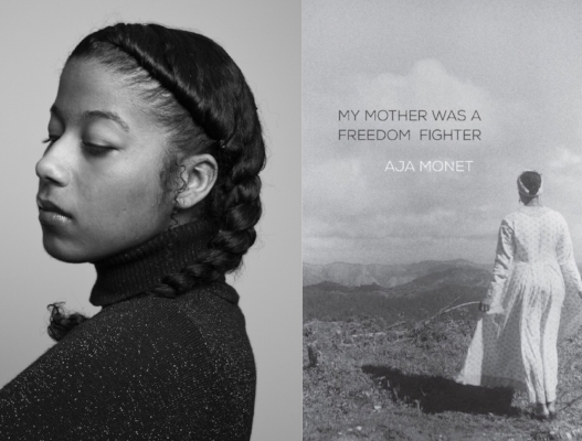 My Mother Was a Freedom Fighter  (2017) by Aja Monet