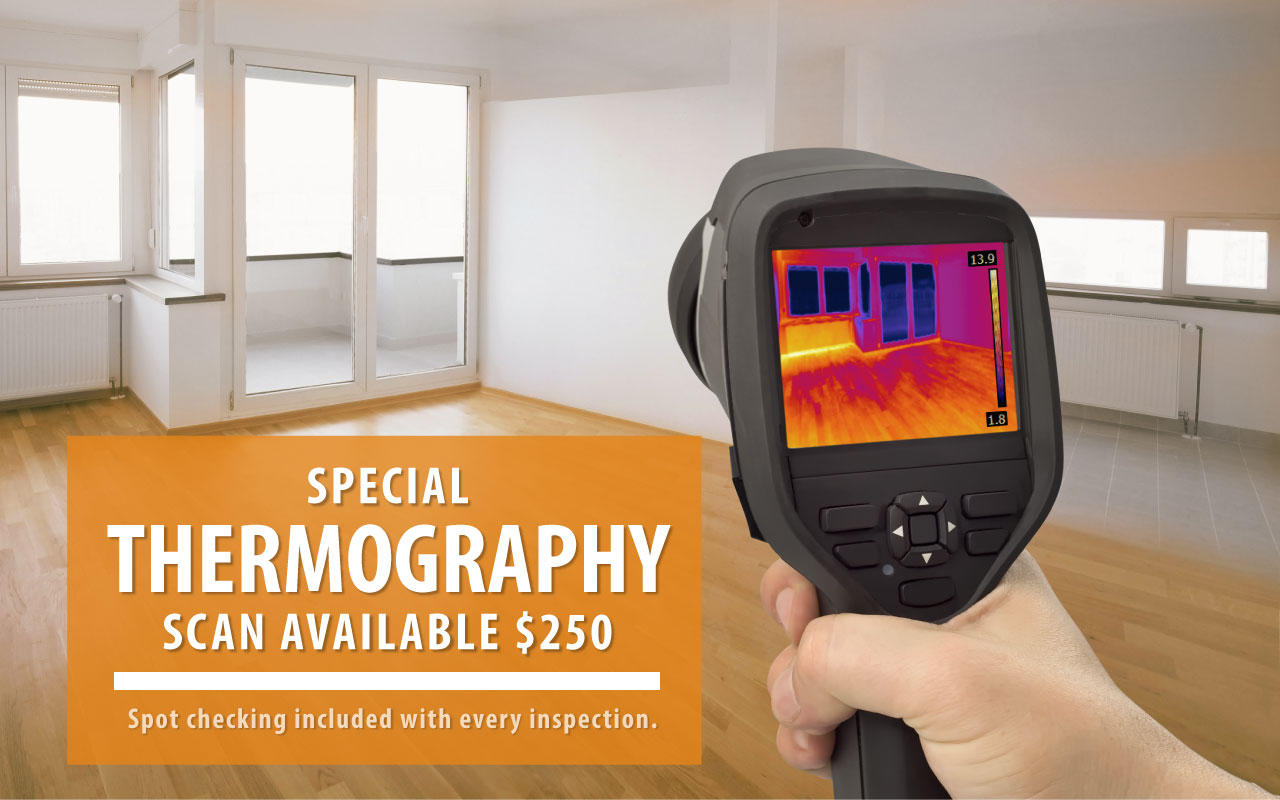 thermography_scan_v2.jpg