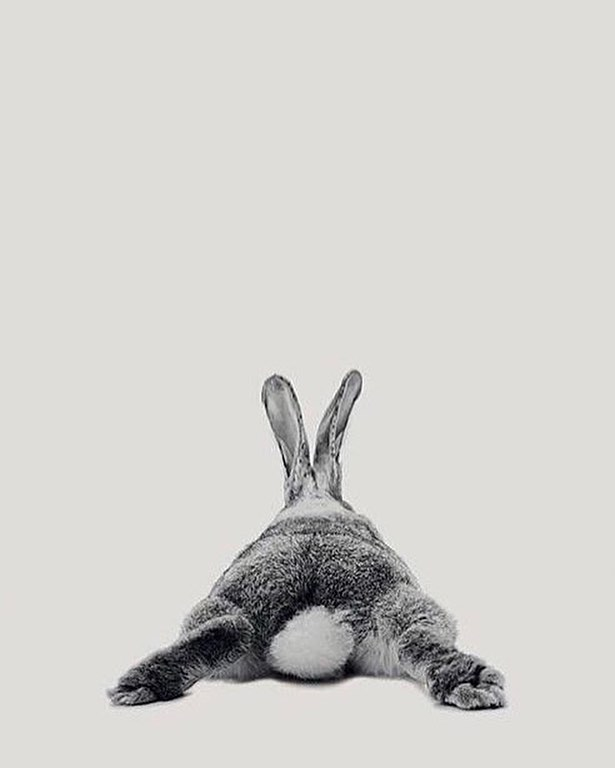 Easter break 🐰🌈#coexistthemovement