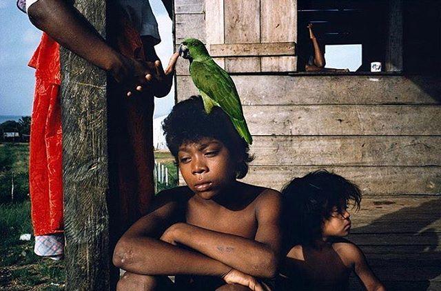 Miskito family and friend 💚 - Puerto Cabezas, Nicaragua 1992 by @webb_norriswebb  #AlexWebb #MagnumPhotos #coexistthemovement