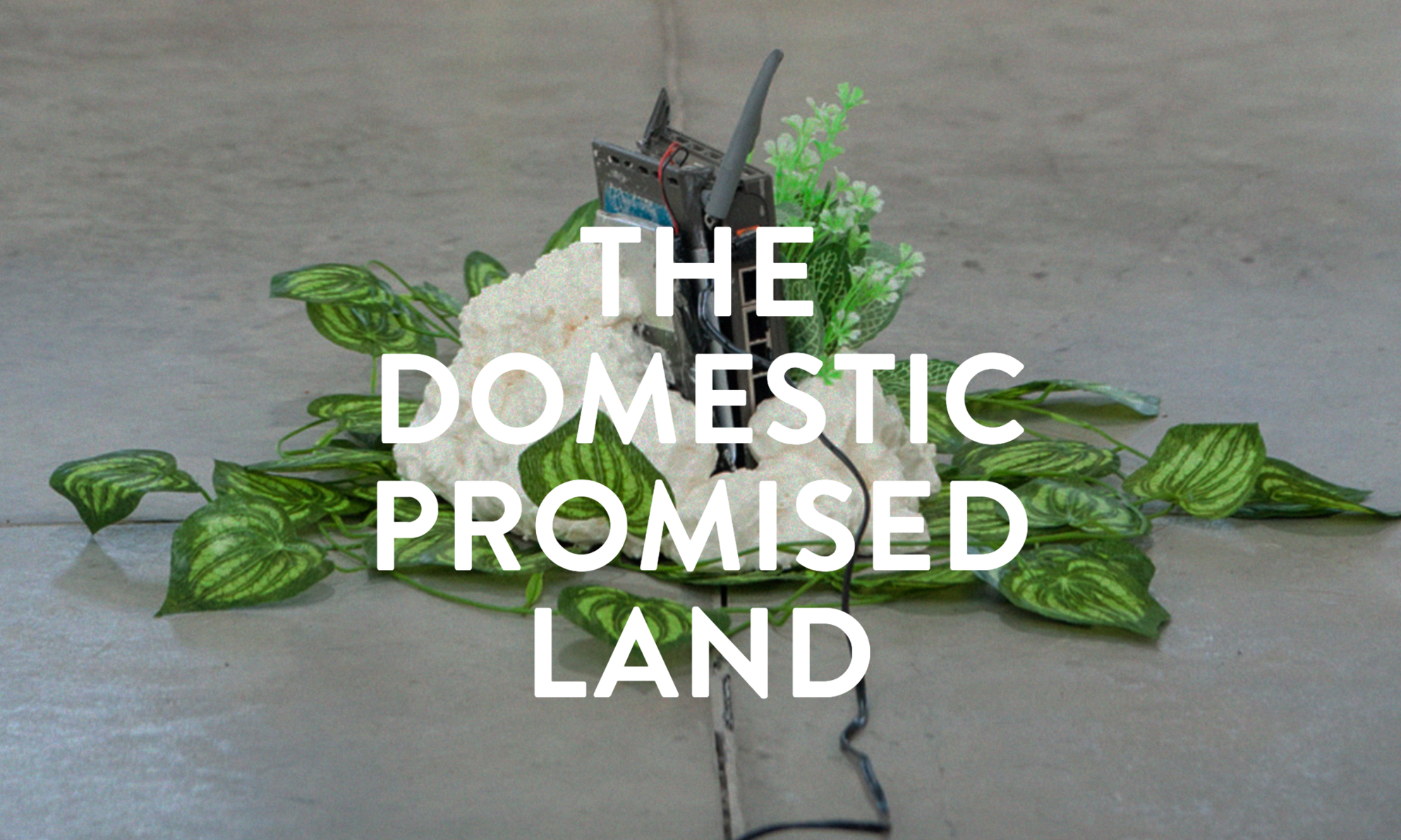 The Domestic Promised Land - parasite 2.0 - Atelier Clerici, Milan - April 2016