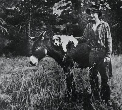 Everett with his dog and burro