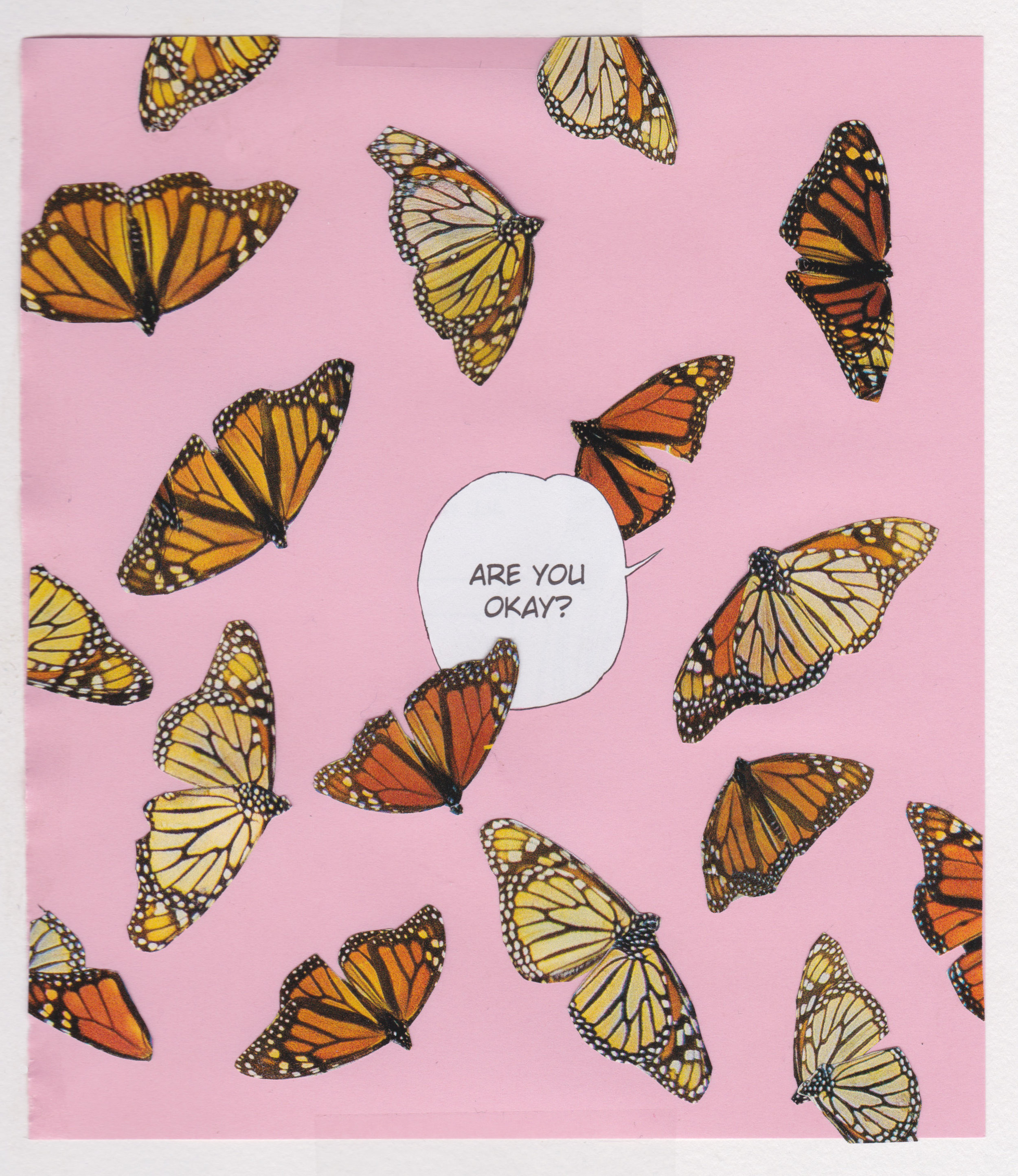 Butterflies Everywhere.jpg