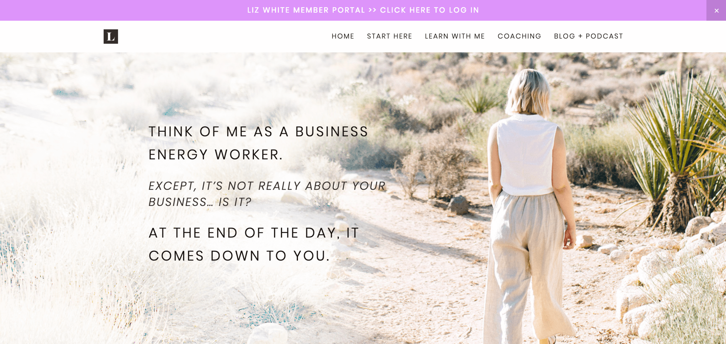 10 Squarespace inspiration websites for coaches6.png