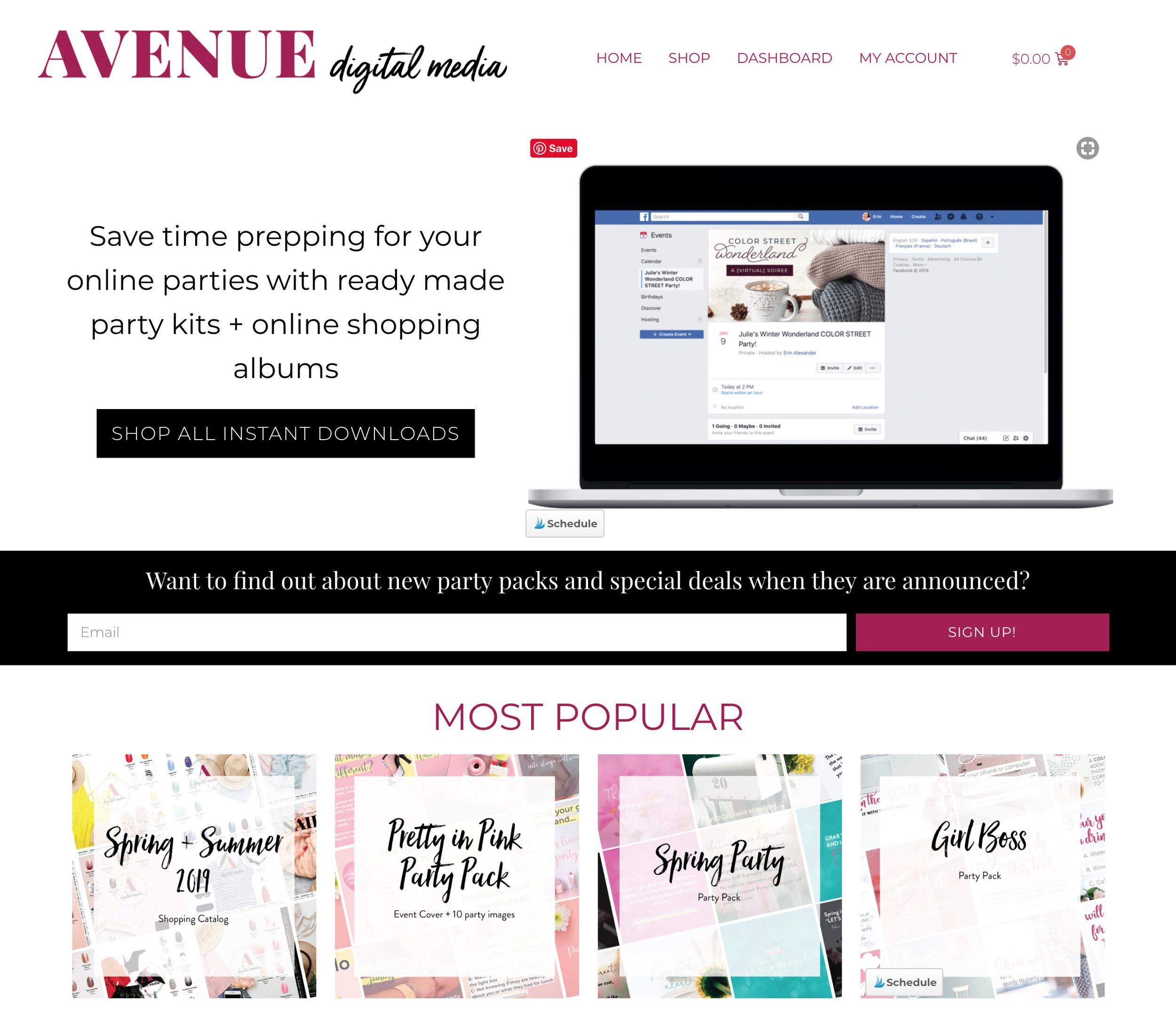 Avenue-Digital-Media-screenshot-a-custom-Wordpress-design-by-Alexander-Design-Co.jpg