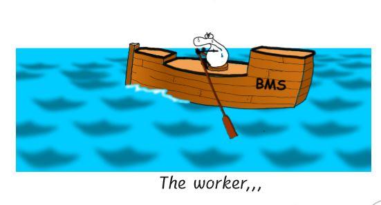 BMS Schiff.JPG