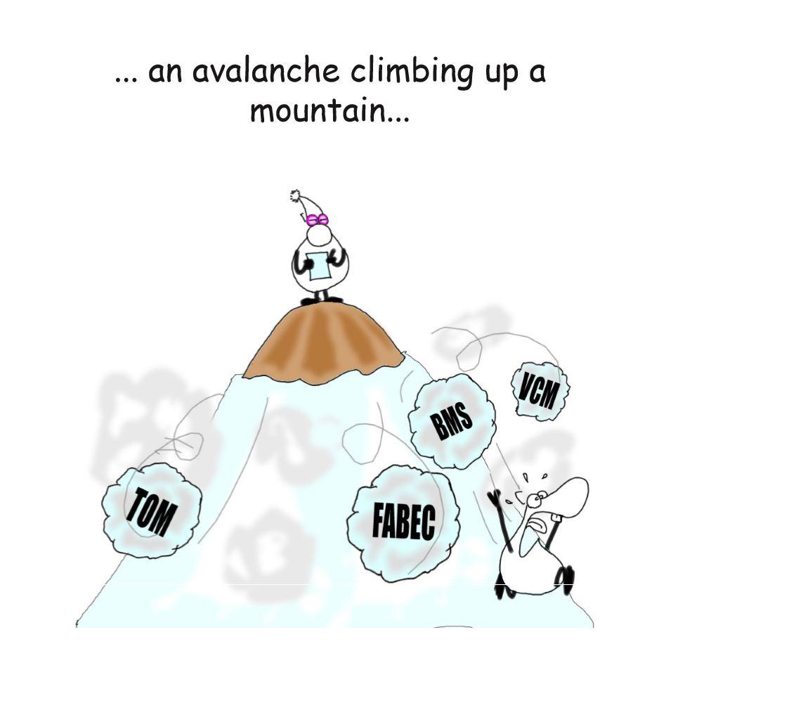 Avalanche 3.JPG