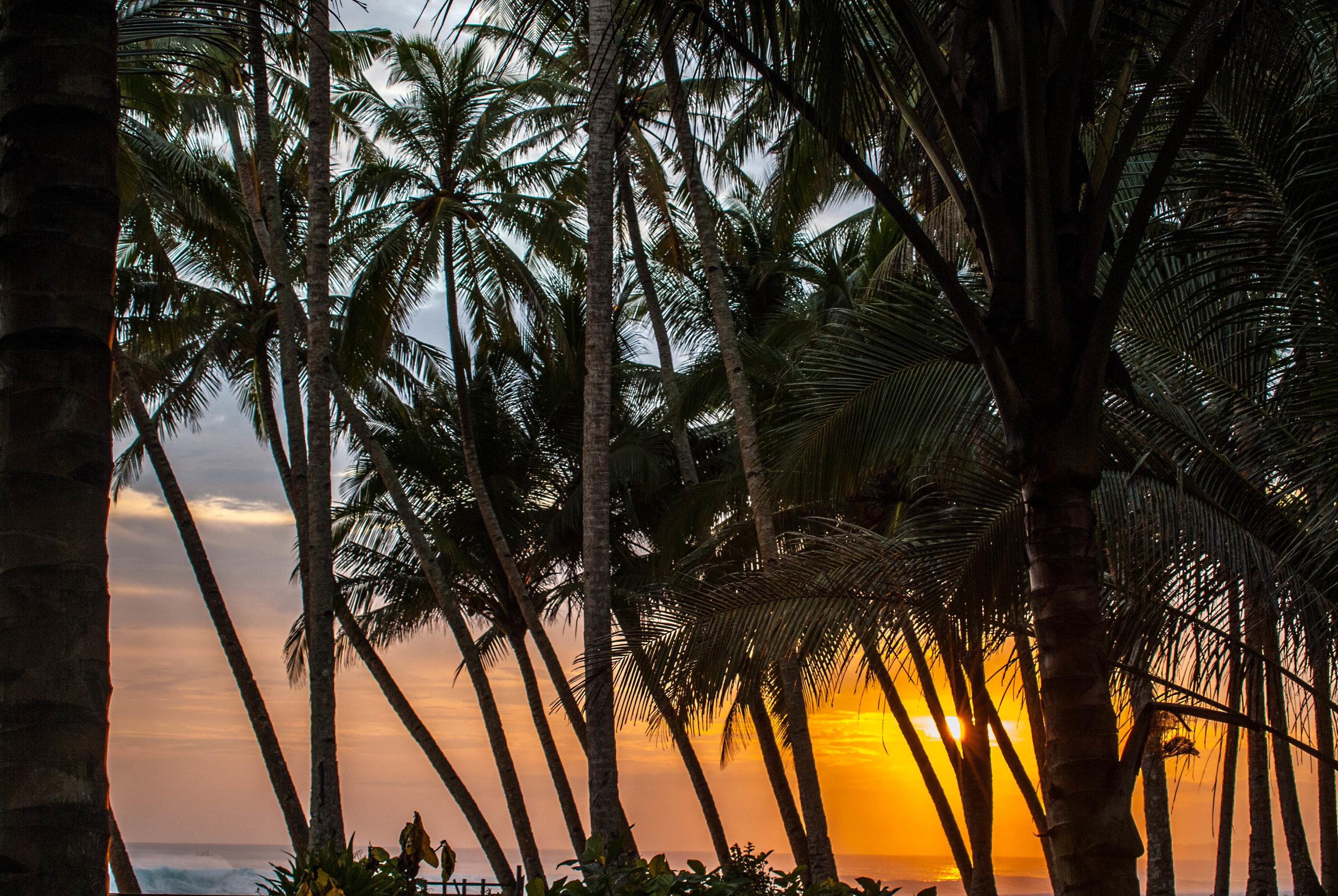 sunsetabomb (1 of 1).jpg