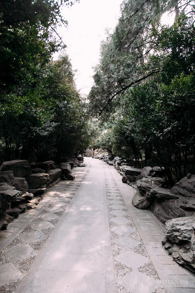 beihai, beijing, china, park, travel photography, street photography, sketch and run, nature, trees