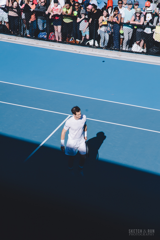 andy murray, australian open, ausopen, tennis