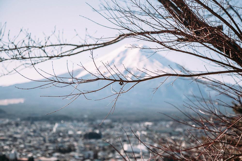fuji-10.jpg