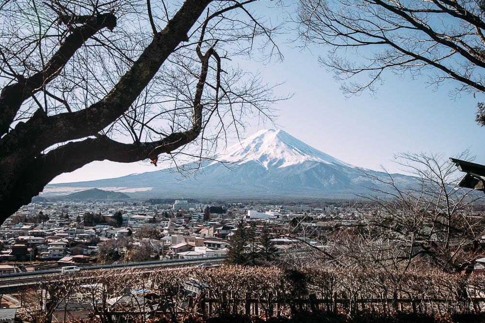fuji-8.jpg