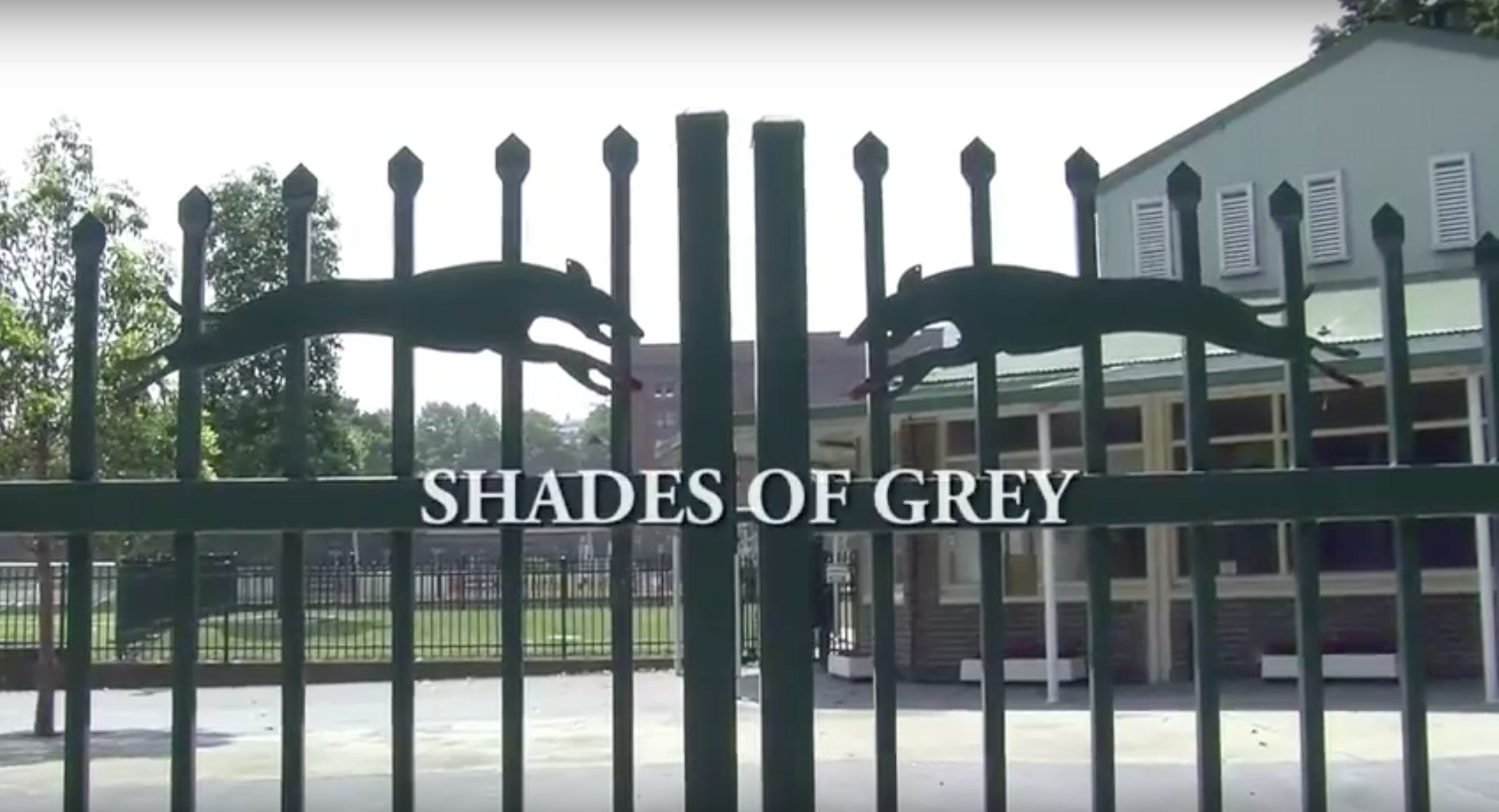 SHADES OF GREY - Short documentary produced for university media course with team. Camera use was mandated by course requirements so no DSLRs were permitted - 2014