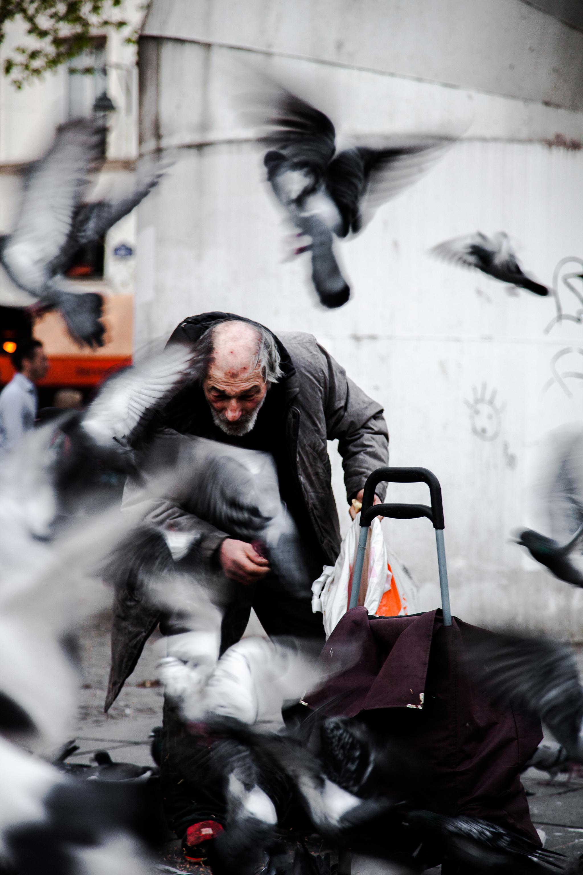 pigeonman-10.png