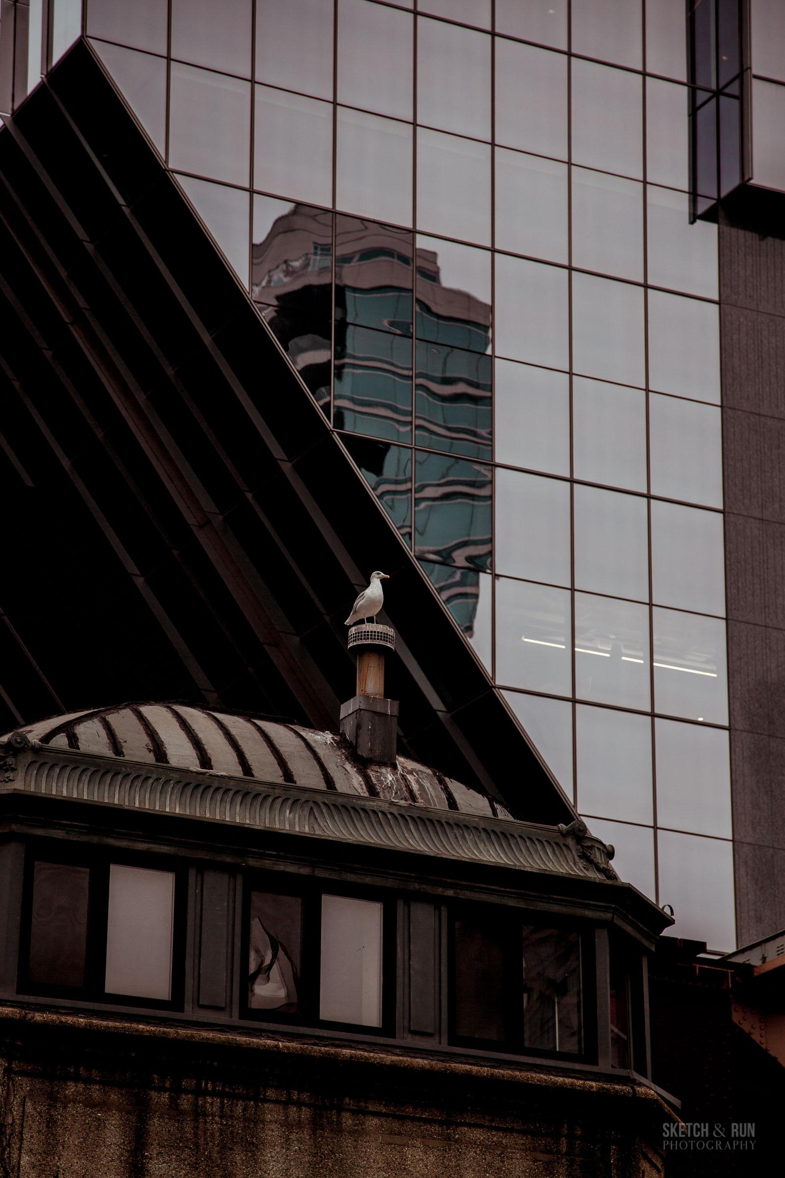 ChicagoBlogLQ-63.jpg
