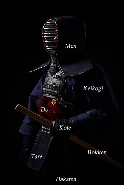 Kendoka uniform (Ho preferito usare il Bokken al posto dello Shinai)