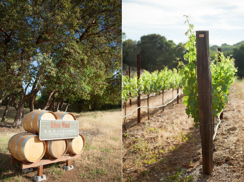 0010_Portola_Valley_Pres_Wedding.jpg