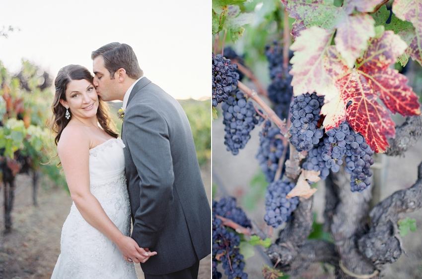 0028_Healdsburg_Trentadue_Wedding_AM_Lori_Paladino_Photography.jpg