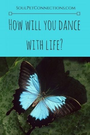 How will you dance with life_.jpg