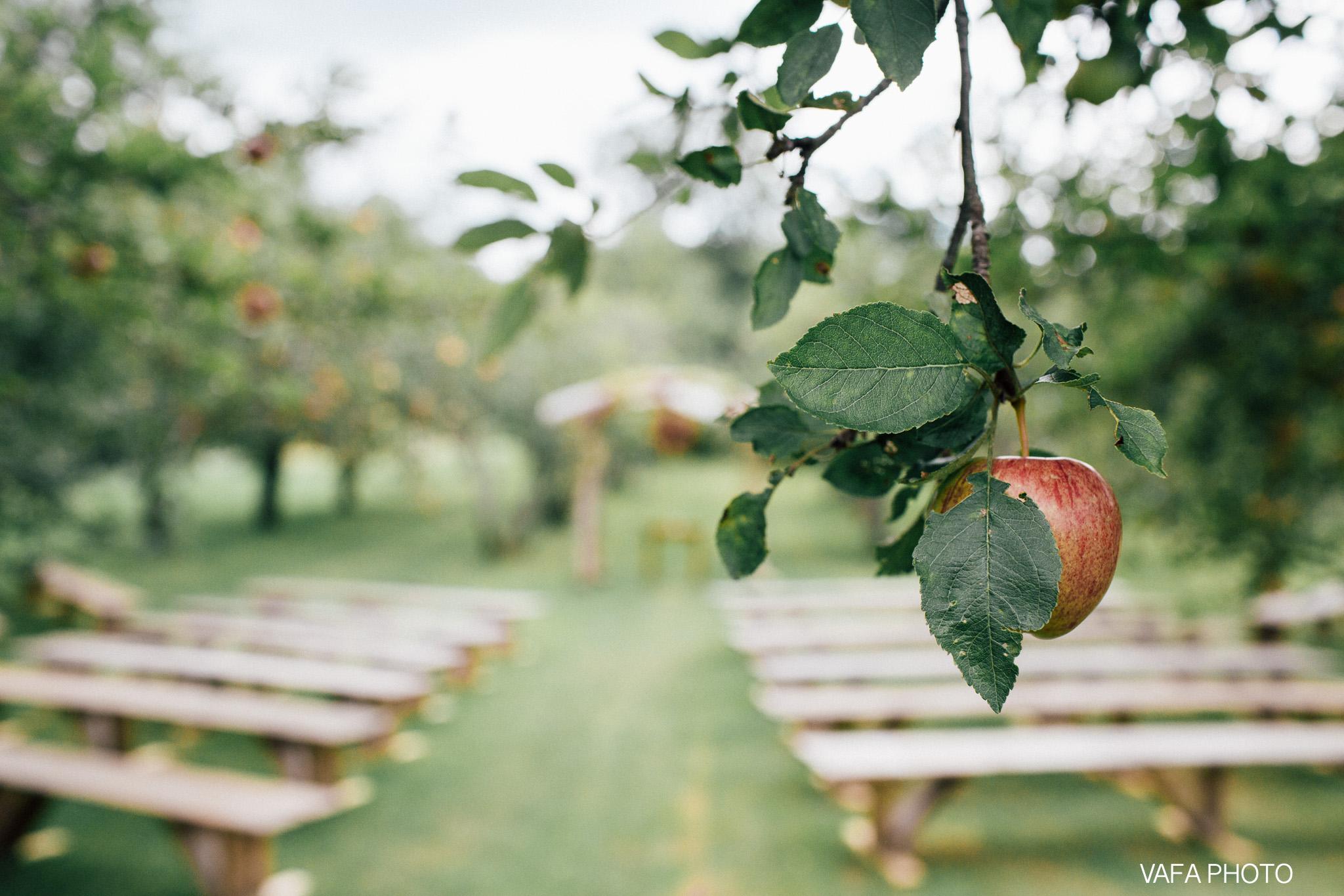 Belsolda-Farm-Wedding-Christy-Eric-Vafa-Photo-352.jpg