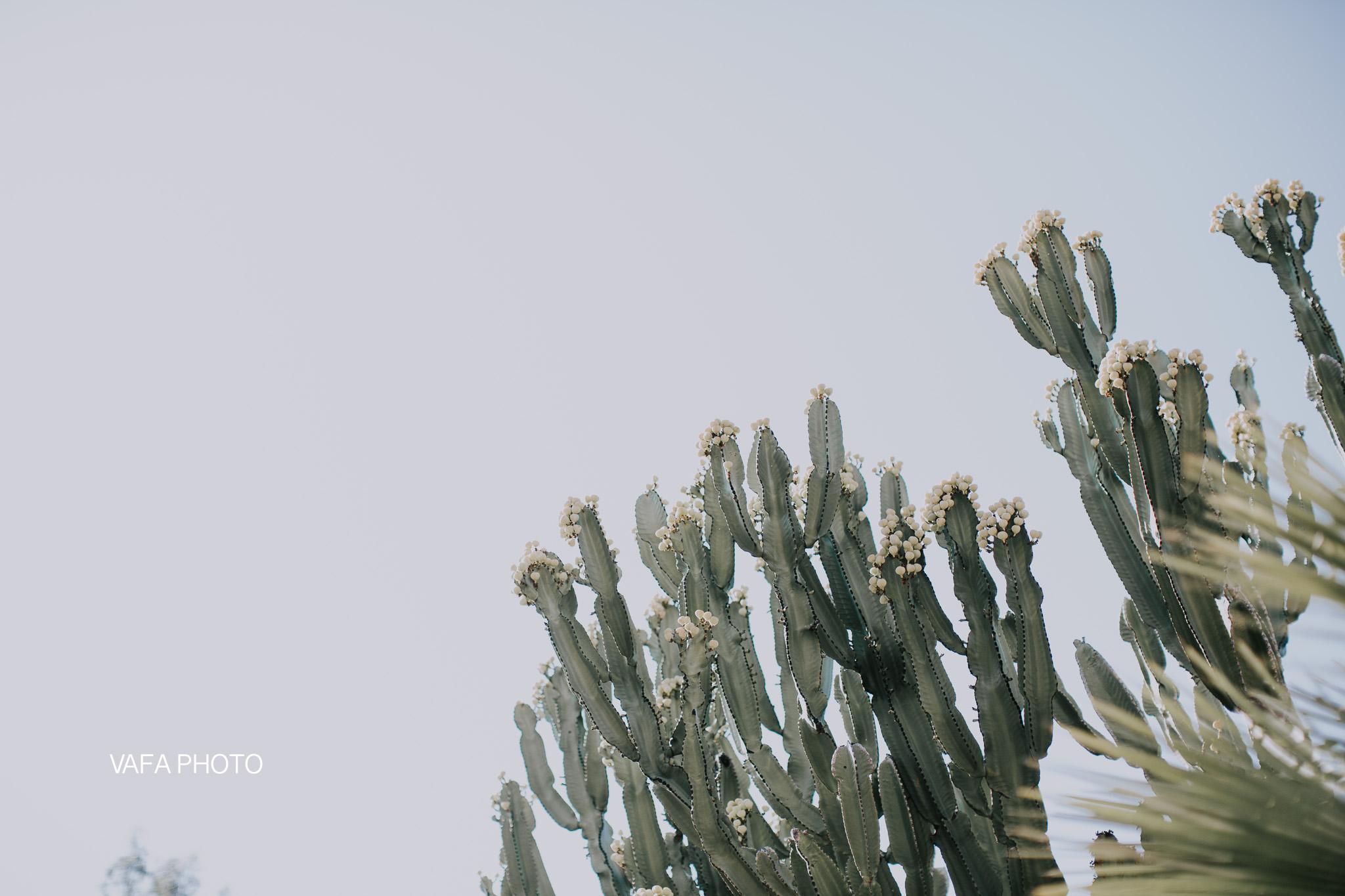 Leo-Carrillo-Ranch-Wedding-Lauren-Mike-Vafa-Photo-208.jpg