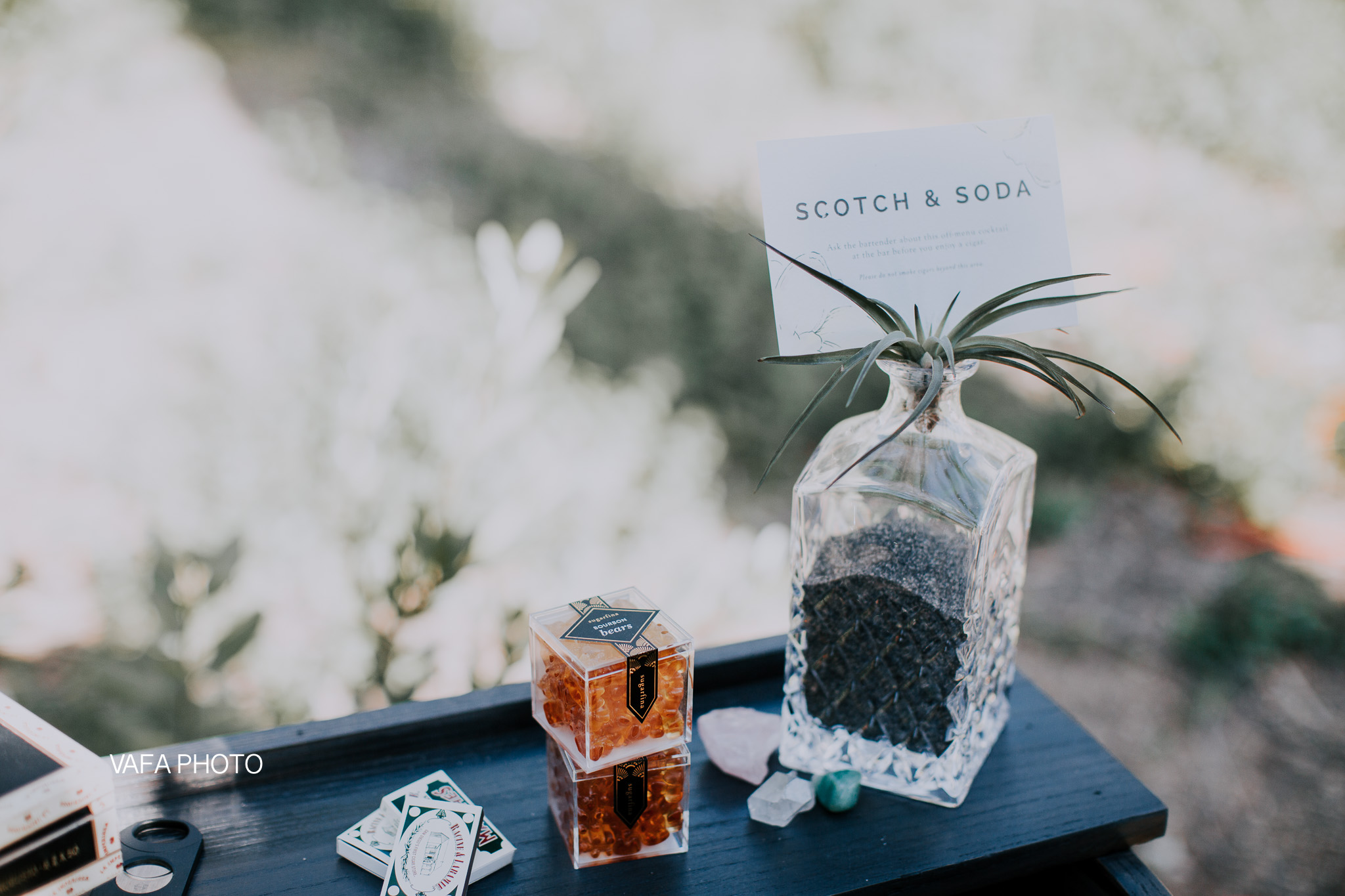 Leo-Carrillo-Ranch-Wedding-Lauren-Mike-Vafa-Photo-484.jpg