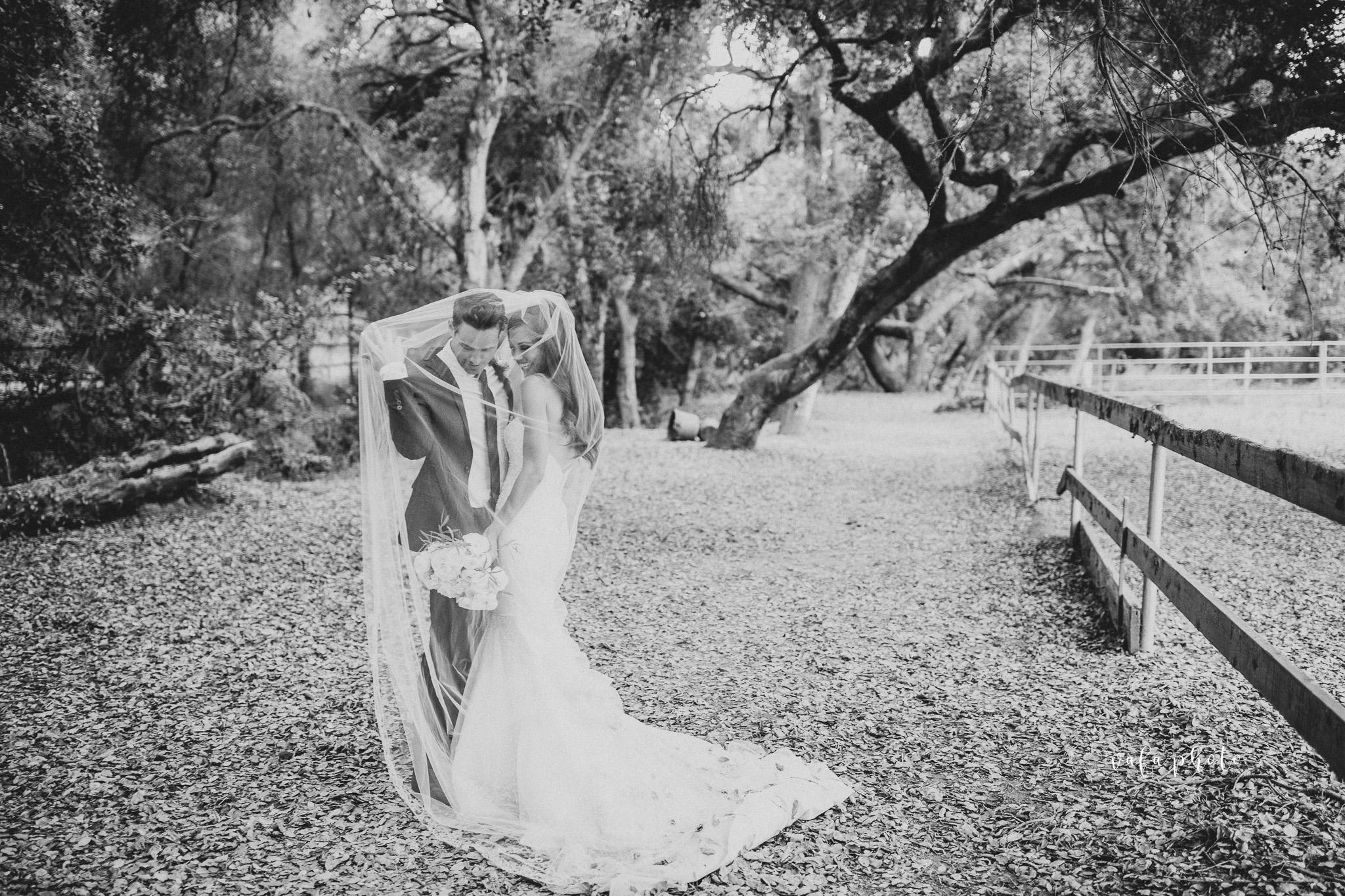 Southern-California-Wedding-Britt-Nilsson-Jeremy-Byrne-Vafa-Photo-577.jpg